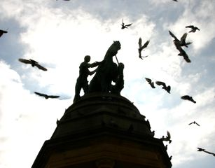 Birds and a war memorial