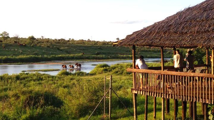 Nasionale Krugerwildtuin Suid Akkommodasie by Crocodile Bridge Safari Lodge | LekkeSlaap